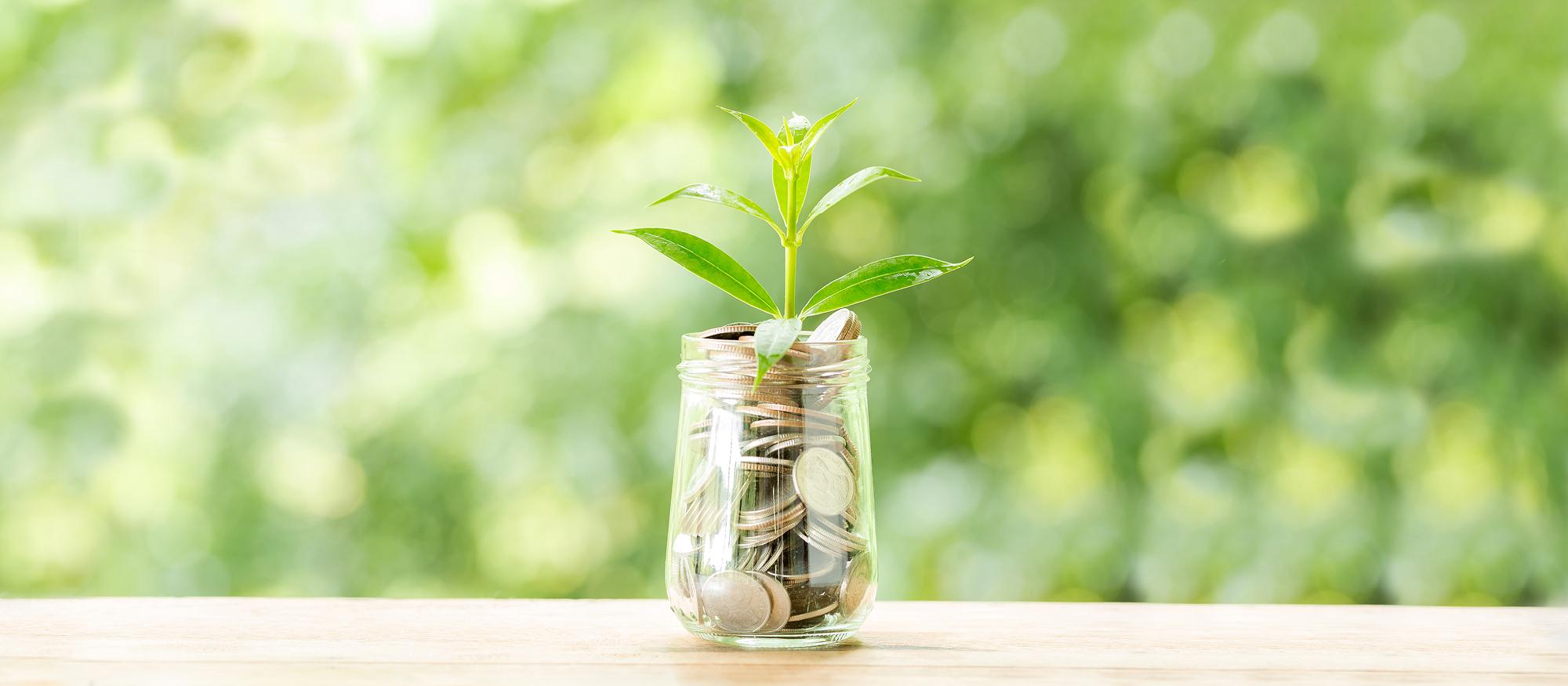 5 accions per estalviar de forma immediata en la teva factura de la llum